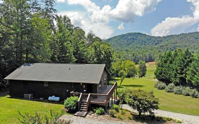 Blairsville Single Family Home For Sale: 293 Stephenson Rd.