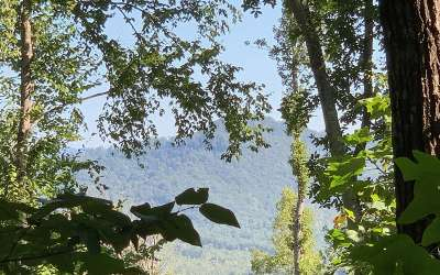 Hayesville Residential Lots & Land For Sale: Penland & Cliffside
