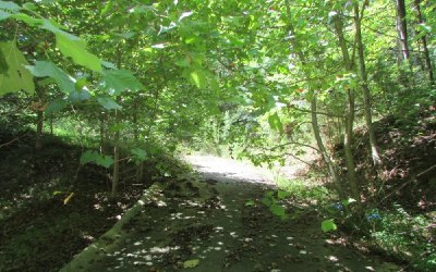 Ellijay Residential Lots & Land For Sale: 452 Apache Court