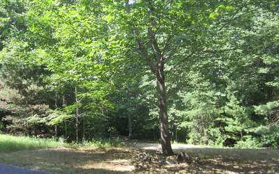 Blairsville Residential Lots & Land For Sale: Lt4 Settlers Cove