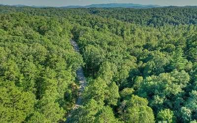 Blue Ridge Residential Lots & Land For Sale: L 4 Toccoa Riverbend Est