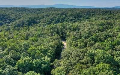 Blue Ridge Residential Lots & Land For Sale: L 8 Toccoa Riverbend Est