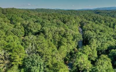 Blue Ridge Residential Lots & Land For Sale: L 9 Toccoa Riverbend Est