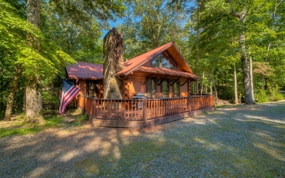 Ellijay Single Family Home For Sale: 455 Abbott Top Rd