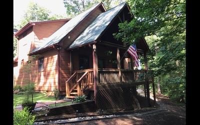 Ellijay Single Family Home For Sale: 197 Pleasant Gap Cemeter