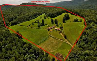 Blue Ridge Residential Lots & Land For Sale: 384 Maxwell Rd