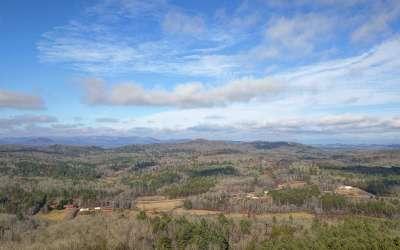 Blairsville Single Family Home For Sale: 249 Ruby Ridge Lane