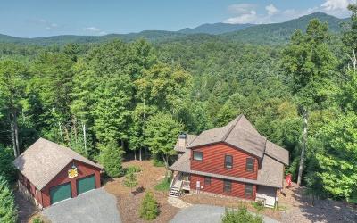 Ellijay Single Family Home For Sale: 996 Settlers Ridge