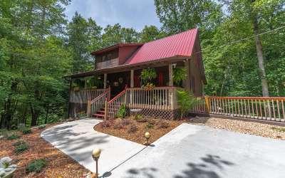 Ellijay Single Family Home For Sale: 37 Monarch Drive