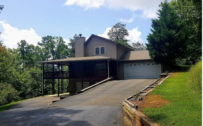 Ellijay Single Family Home For Sale: 190 Owltown Drive
