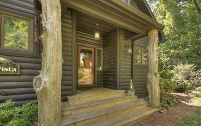 Ellijay Single Family Home For Sale: 239 Ridge Top Drive