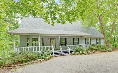 Blairsville Single Family Home For Sale: 294 Sharp Top Circle