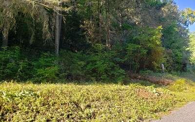 Blue Ridge Residential Lots & Land For Sale: Devils Den