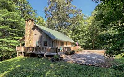Hiawassee Single Family Home For Sale: 302 Barefoot Hills Road