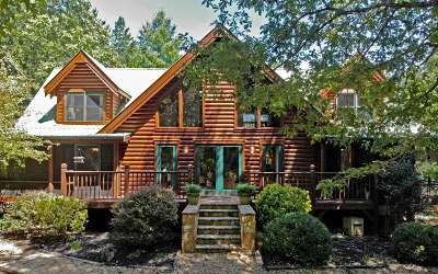 Blairsville Single Family Home For Sale: 869 Gibbs Road