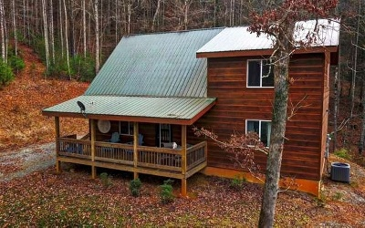 Ellijay Single Family Home For Sale: 1284 Riggs Rd