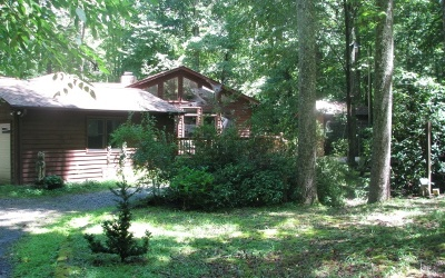 Blairsville Single Family Home For Sale: 382 Hornaday Rd