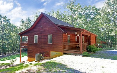 Blairsville Single Family Home For Sale: 230 Craig Thompson Drive