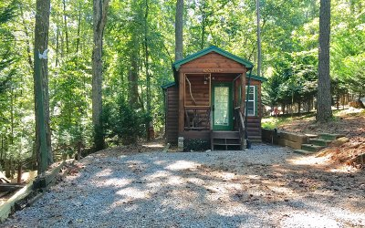 Homes For Sale in Coosawattee River Resort