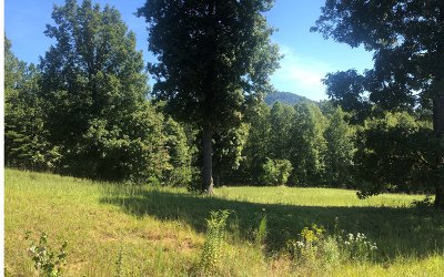 Young Harris Residential Lots & Land For Sale: 48 The Preserve Ar Cc