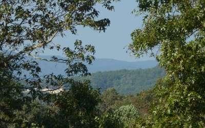Blue Ridge Residential Lots & Land For Sale: Lt 28 Winding Creek Road