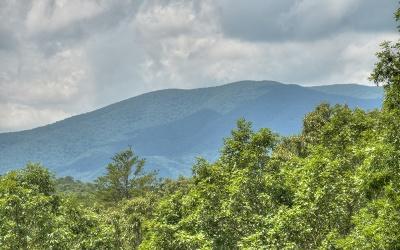 Blue Ridge Residential Lots & Land For Sale: 1.49 Brookhaven Lane