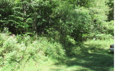 Brasstown Residential Lots & Land For Sale: Mason Road