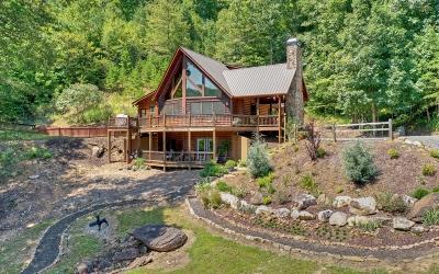 Blue Ridge Single Family Home For Sale: 75 Geronimo Road
