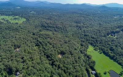 Mineral Bluff Residential Lots & Land For Sale: Lt 7 Wolf Creek Estates
