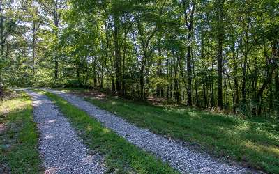 Mineral Bluff Residential Lots & Land For Sale: Lt 8 Wolf Creek Estates