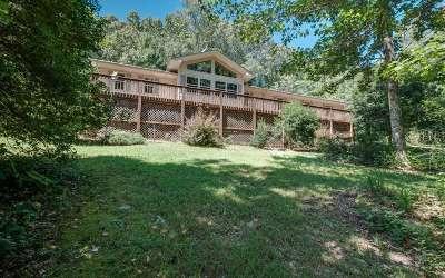 Blairsville Single Family Home For Sale: 351 Patricks Dr.