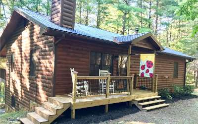 Blue Ridge Single Family Home For Sale: 357 Mystic Lane