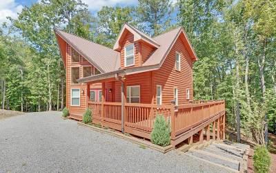 Ellijay Single Family Home For Sale: 1466 Newport Drive