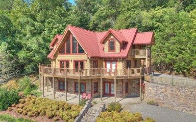 Ellijay Single Family Home For Sale: 273 Rose Petal Lane