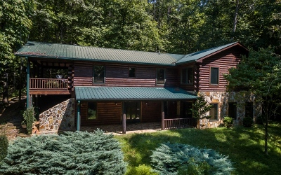 Blue Ridge Single Family Home For Sale: 1896 Pack Creek Road