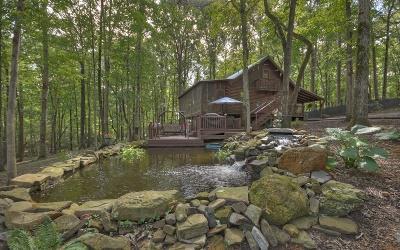 Ellijay Single Family Home For Sale: 362 Riverwood Road