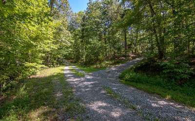 Mineral Bluff Residential Lots & Land For Sale: Lt 16 Wolf Creek Estates