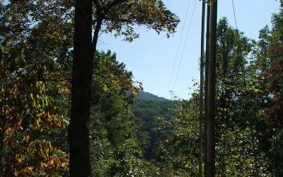 Mineral Bluff Residential Lots & Land For Sale: Salem Road