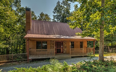 Ellijay Single Family Home For Sale: 24 Colgate Ct