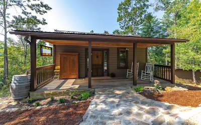 Blue Ridge Single Family Home For Sale: 120 Community Hill Drive
