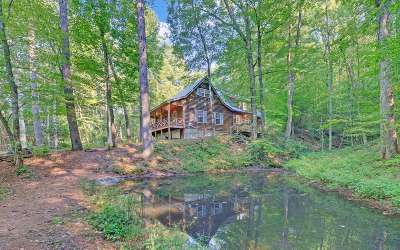 Suches Single Family Home For Sale: 540 Old Mill Rd