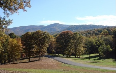 Ellijay Residential Lots & Land For Sale: Lt 25 Greystone Trace
