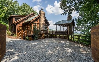 Ellijay Single Family Home For Sale: 360 Amy Creek Circle