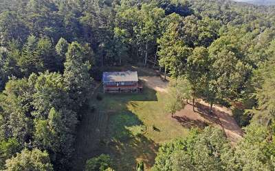 Blairsville Single Family Home For Sale: 267 Opal Road