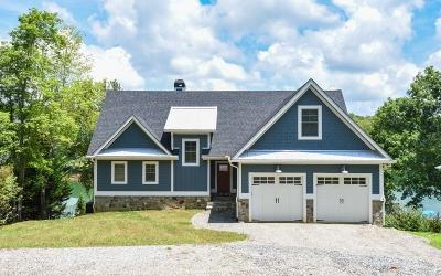 Blairsville Single Family Home For Sale: 570 Lake Vista Drive