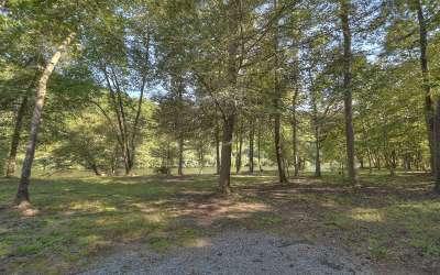Blue Ridge Residential Lots & Land For Sale: L 12 Toccoa Riverbend Est