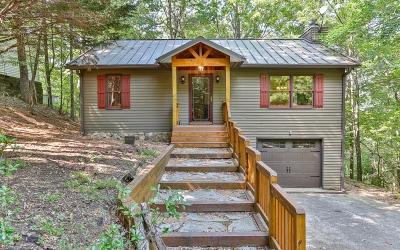 Ellijay Single Family Home For Sale: 986 Mountain Oak Rd