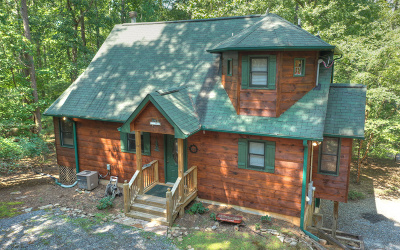 Gilmer County Single Family Home For Sale: 1270 Zenith Trail