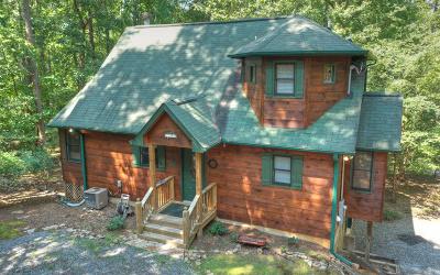 Ellijay Single Family Home For Sale: 1270 Zenith Trail