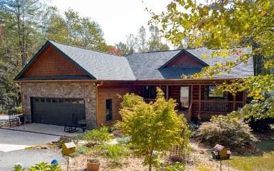 Ellijay Single Family Home For Sale: 80 Bear Creek Circle